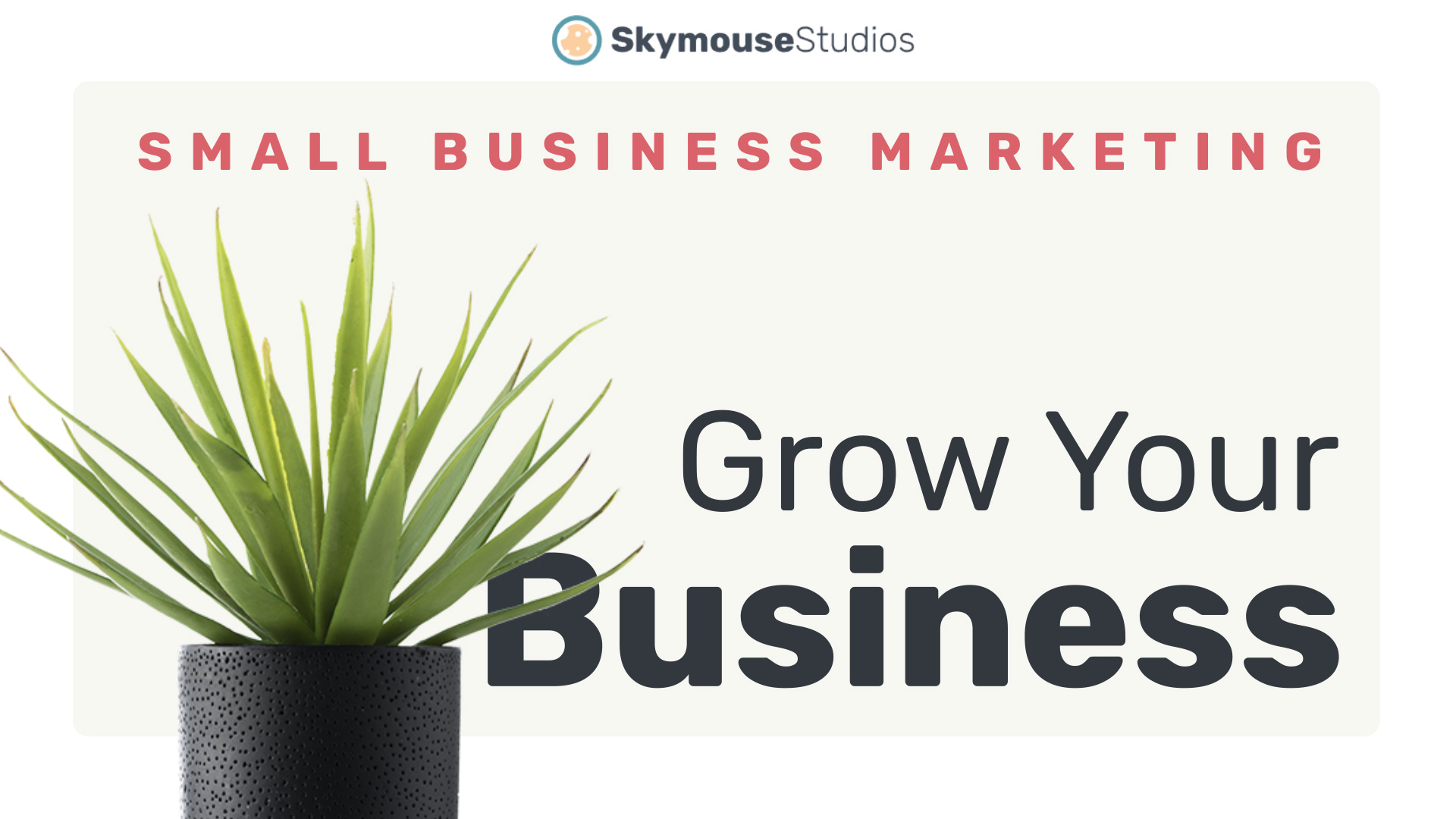 Create a KILLER marketing plan for a small business